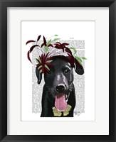 Framed Black Labrador With Green Fascinator