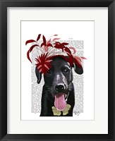 Framed Black Labrador With Red Fascinator