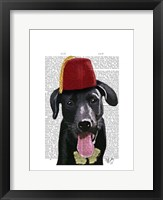 Black Labrador With Fez Framed Print