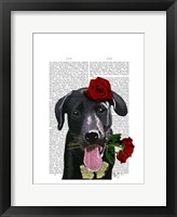 Black Labrador with Roses Framed Print