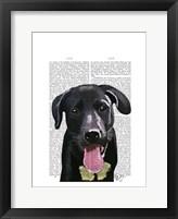 Framed Black Labrador Plain