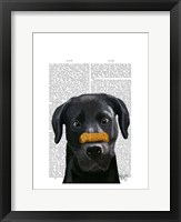 Black Labrador With Bone on Nose Framed Print