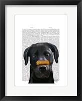 Framed Black Labrador With Bone on Nose