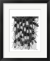 Bee and Honeycomb Print Framed Print