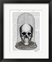 Framed Skull In Bell Jar