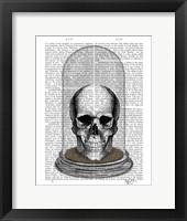 Framed Skull In Bell Jar