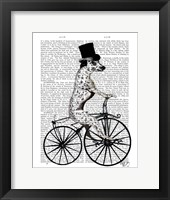 Framed Dalmatian on Bicycle