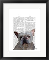 Framed White French Bulldog Plain