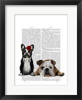 French Bulldog and English Bulldog Framed Print