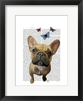 Brown French Bulldog and Butterflies Framed Print