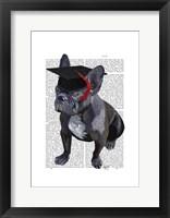 Framed Graduation French Bulldog