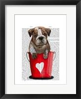 Bulldog Bucket Of Love Red Framed Print