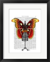 Mannequin Red And Yellow Butterfly Framed Print