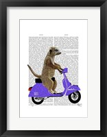 Meerkat on Lilac Moped Framed Print