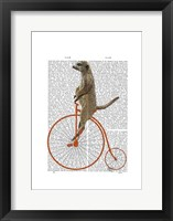 Meerkat on Orange Penny Farthing Framed Print