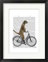 Meerkat on Bicycle Framed Print