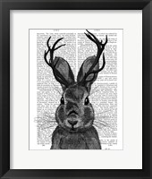 Framed Jackalope with Grey Antlers