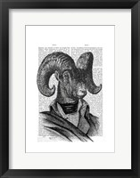 Mountain Goat Portrait Framed Print