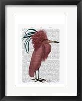 Framed Crested Marsala Bird