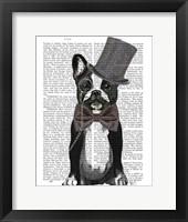 Framed Monsieur Bulldog