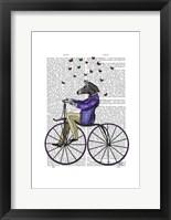 Zebra On Bicycle Framed Print