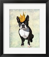 Framed Boston Terrier and Crown