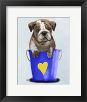 Bulldog Bucket Of Love Blue Framed Print