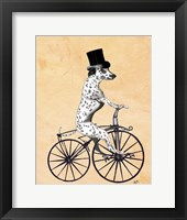 Dalmatian On Bicycle Framed Print
