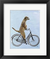 Framed Meerkat on Bicycle