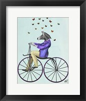 Framed Zebra On Bicycle