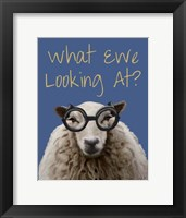 What Ewe Looking At Sheep Print Framed Print