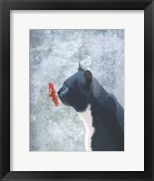 Framed Black Cat Sniffing Flower