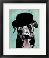 Black Labrador in Bowler Hat Framed Print