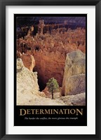 Framed Determination