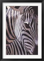 Framed Zebra Stripes