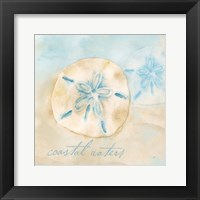 Watercolor Shell Sentiments IV Framed Print