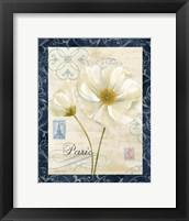 Paris Poppies w/Navy Border I Framed Print