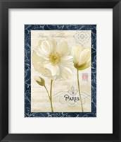 Paris Poppies w/Navy Border II Framed Print