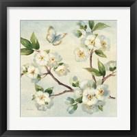 Framed Cherry Bloom I