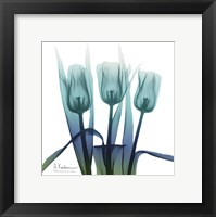 Framed Blue Ombre Tulips