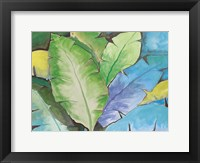 Framed Cerulean Rainforest