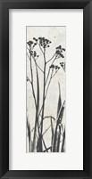 Framed Ink Plants Panel