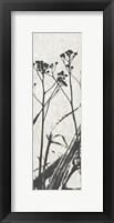 Framed Ink Plants Panel 2