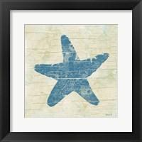 Framed Star Fish