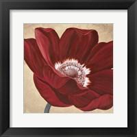 Framed Aniva Red