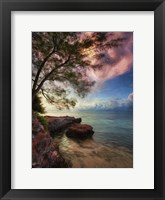 Framed Vertical Tree And Water With Worder