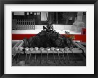 Framed Inside The Shrine