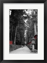 Framed Road To The Temple