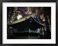 Framed Nikko Architectural Detail