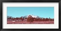 Framed Mammoth Mountain